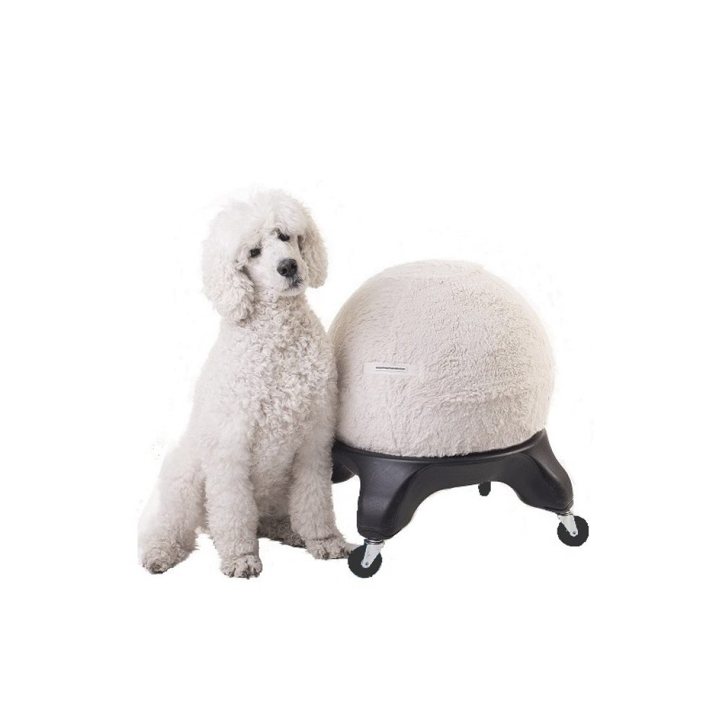 Active Office Ball Chair with Free Cozy Sherpa Cover