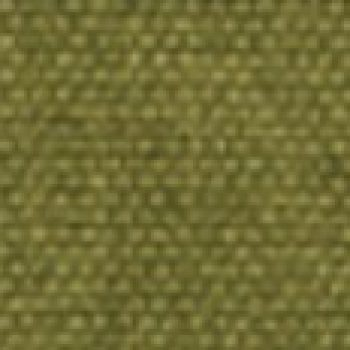 ICON Pear Fabric CA13